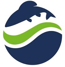 logo_avn_80536590